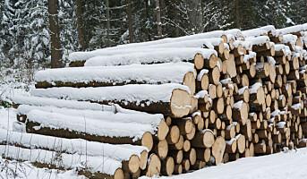 Første nedgang i tømmerhogsten siden 2009