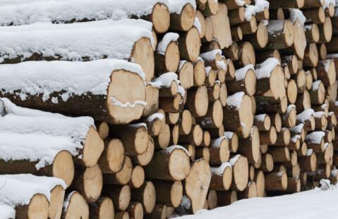 Nedgang i tømmerhogsten for første gang siden 2009