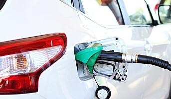 Bergene Holm vil produsere biodrivstoff