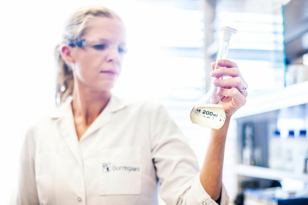 Borregaard mottar nær 14 millioner kroner i støtte til forskning på lignin-baserte produkter. (Illustrasjonsfoto: Borregaard)