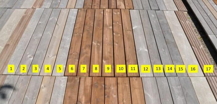 En oversikt over materialene som var med i testen vedNorsk Treteknisk Institutt. Accoya er nummer 16.