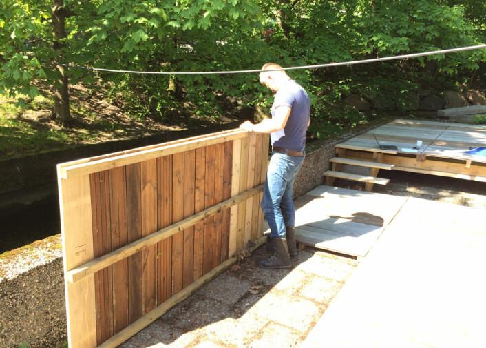 Vel to år etter at terrassebordene ble montert granskes de nøye ut ifra en rekke kriterier, deriblant råte. Ingen av terrassebordene viste tegn til råteangrep høsten 2016. (Foto: Treteknisk)