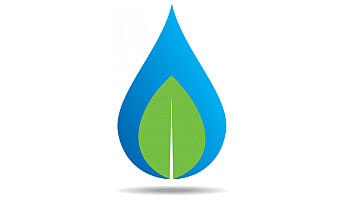 Seminar: Kan treet bli den nye olja?