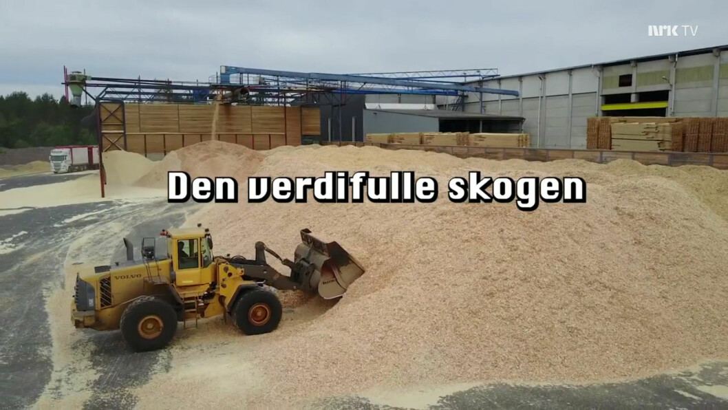 (Skjermbilde: tv.nrk.no)