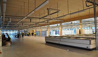 Kiwi åpner trebutikk i Sandnes