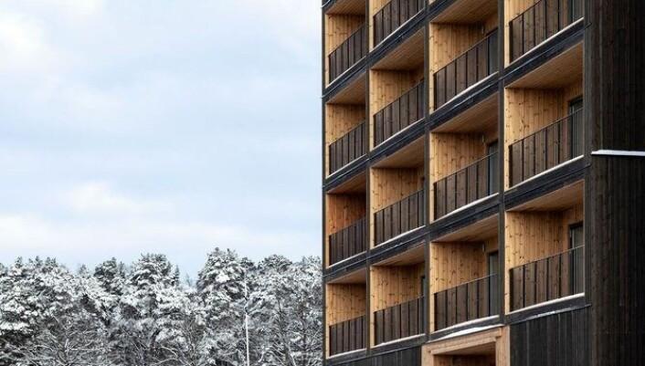 Nietasjes trebygning, Kajstaden, Sverige. Foto: C.F. Møller.