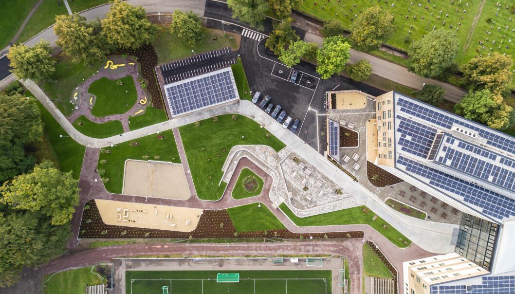 Konseptet er utviklet med et ønske å trekke parken inn i bygget.