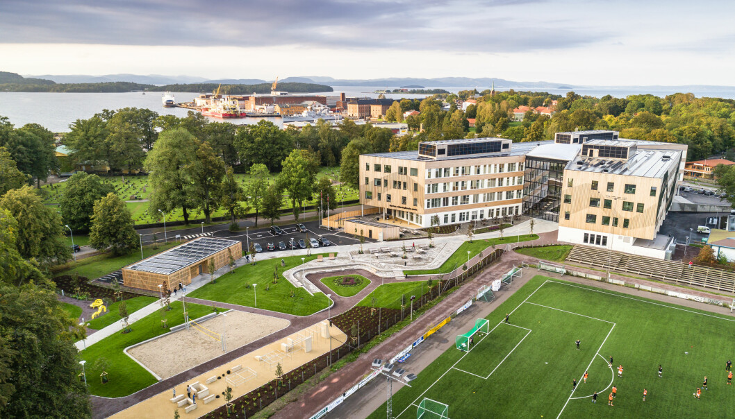 De organiske stiene fra den historiske delen av parken videreføres fram til skolen og videre gjennom byggets atrium.