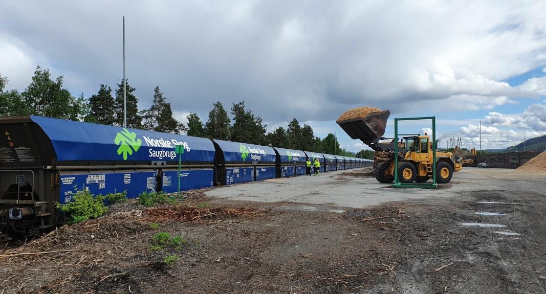Treindustribedriften Gausdal Bruvoll i Oppland lager byggematerialer i tre. Flis er sidestrøm i produksjonen og blir fraktet til Norske Skog Saugbrugs i Halden der det blir til ulike typer magasinpapir.