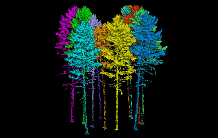 3D-bilde av skog basert på laserdata innhentet fra drone. Høy detaljeringsgrad gjør det mulig å vurdere skogressursen sammensetning, treslag, antall og størrelse, i tillegg til økologi og bonitet - og dermed bidra til bedre skogforvaltning.