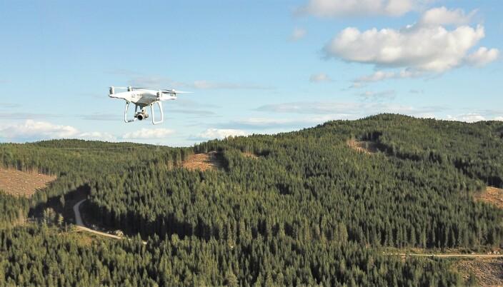 Droner er mye brukt i skogbruket og er et viktig redskap for å innhente høyoppløselig informasjon om ressursene og skogens tilstand. I SmartForest inngår droner som et naturlig verktøy og er sentral i videre utvikling av digitalisert skogsdrift.