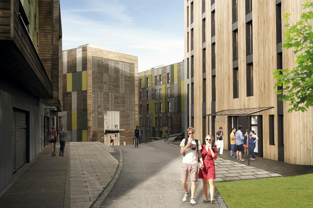 AF skal bygge nye studentboliger i massiv tre på Remmen i Halden.