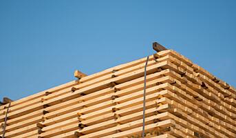 Fortsatt sterk etterspørsel etter trebaserte byggevarer