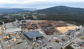Moelven mangedobler kapasiteten på impregnerte treprodukter