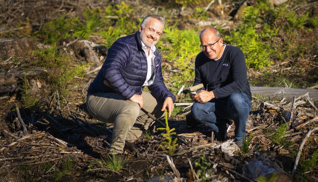 Espen Eriksen i Trapperingen og Bent Nygård i Fritzøe Engros på plantefeltet i Fritzøe Skoger i Larvik.