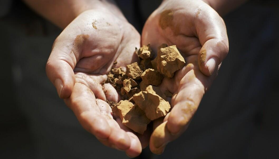 Ligninen som testes er ekstrahert fra svartlut, og er et restprodukt fra papirproduksjon