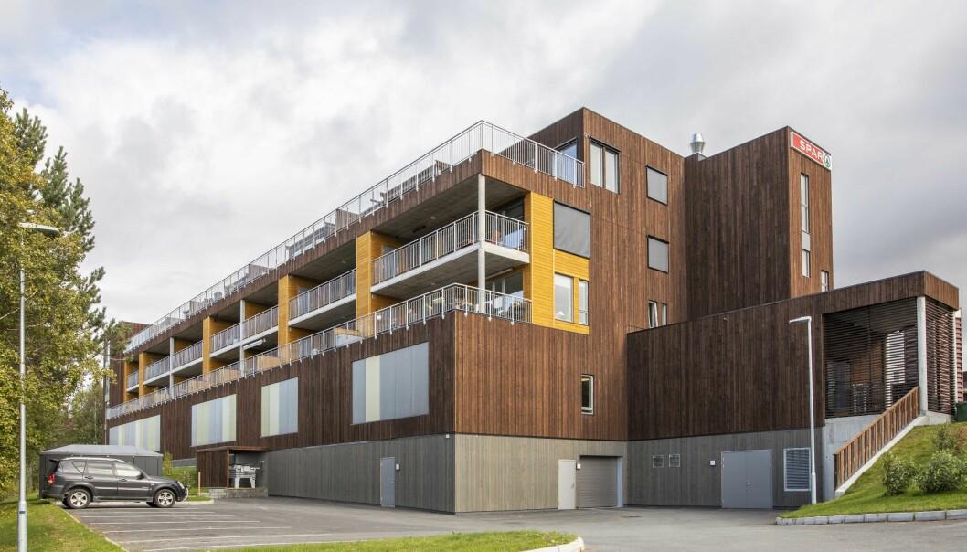 Royalbehandlet tre har vært en suksesshistorie i snart 50 år. Ringvirkningene er enorme hos leverandører, på salg og i byggeindustrien når prosjekter over hele Norge nå står stille.