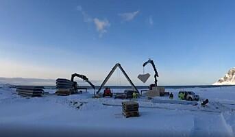 Fiskehjell i massivtre i Lofoten
