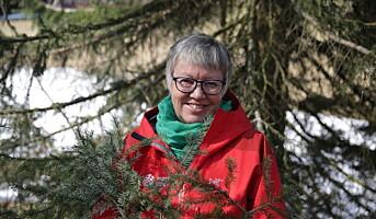Berit Sanness er ny klyngeleder for Norwegian Wood Cluster