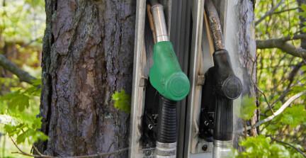 Shell og Bergene Holm i omfattende samarbeidsavtale med Biozin