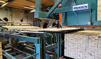 Ringalm investerer og dobler kapasitet i trelastproduksjon